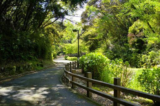 Kinugasayama Park