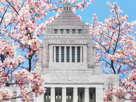 Image of Parliament Building and Sakura