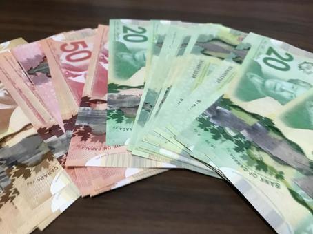 캐나다 달러
