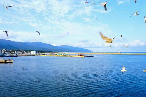 Scenery of Ryotsu Port seen from Sado Kisen