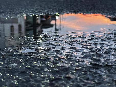 Evening after the rain. Sunset reflected in a puddle and a residential area