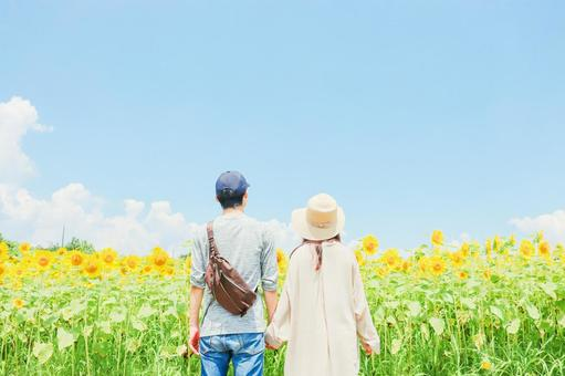 Sunflower field and couple ②