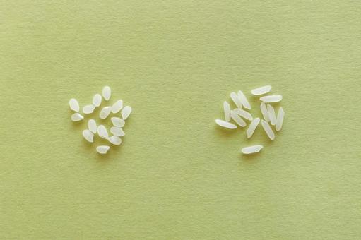 일본의 쌀과 재스민 쌀의 비교 (녹색 배경)