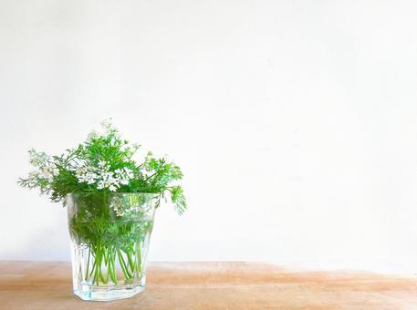 Pakuti flowers