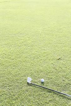 Grass club and golf ball 5