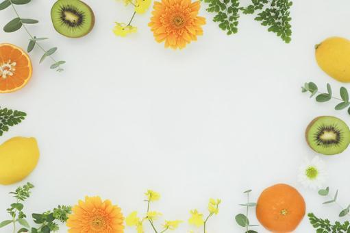 Vitamin color frame