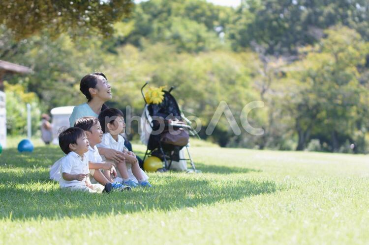 母子 35 木陰で見物 2の写真