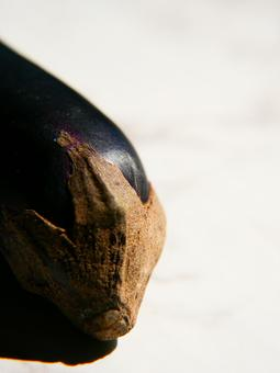 Eggplant shadow