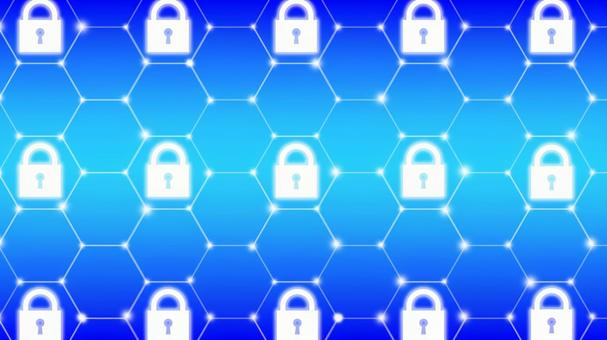 Security net