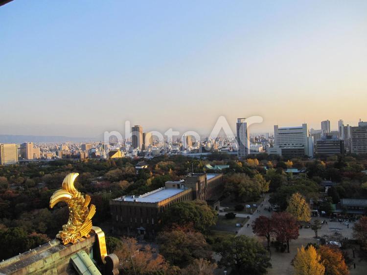 夕日を浴びる街 大阪城からの写真の写真