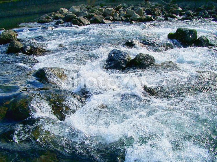 島田川の水の流れ フリー素材無料素材イメージの写真
