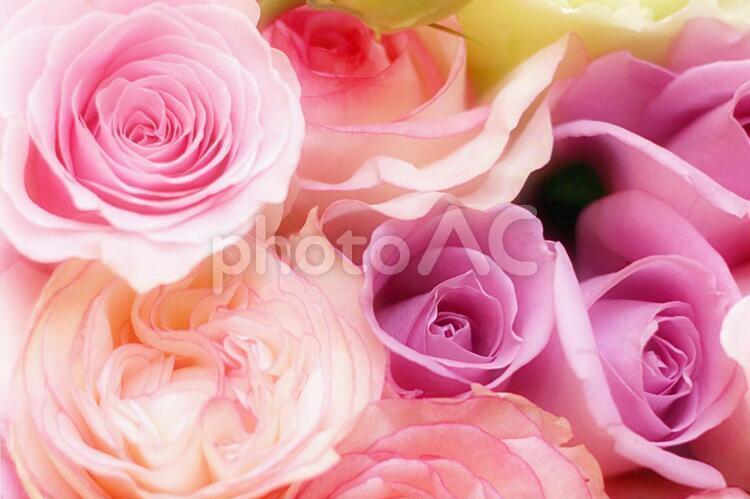 花束 2の写真