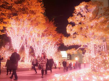 Shinjuku · Christmas illumination