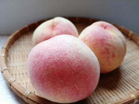 Peach Kanoiwa White Peach 4