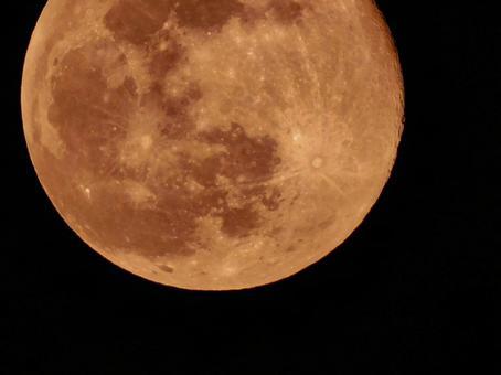 달의 분화구