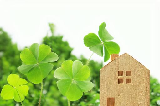 Four-leaf clover and house blocks and white background