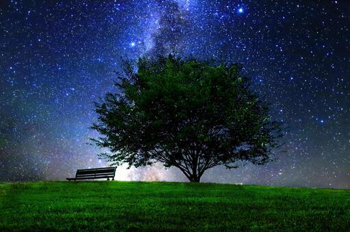 繁星點點的天空照耀在草地上