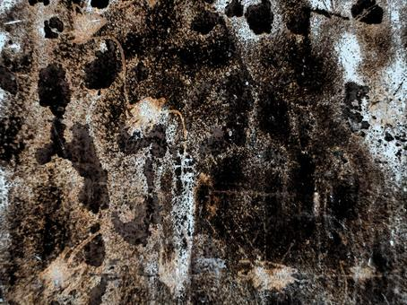 Background Texture mold? Rust? Iron plate with large damage