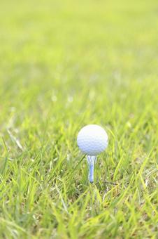 Grass and golf ball 5