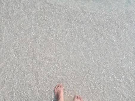 파도 해변 물가 맨발 다리 모래 백사장 바다
