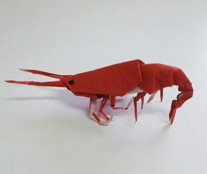 종이 접기의 붉은 새우