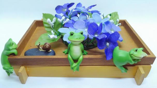 カエルと紫陽花とカタツムリ1