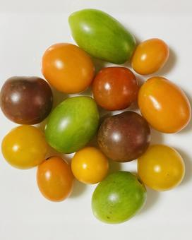Color tomatoes (8)
