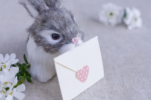 Love letter please