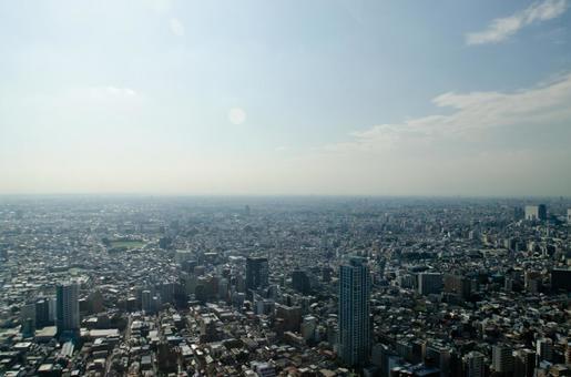 도쿄 풍경 16