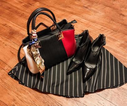 Ladies Fashion Image Bag and Shoes