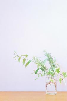녹색 식물의 간단한 세로 배경 텍스처 벽지 인테리어 화이트
