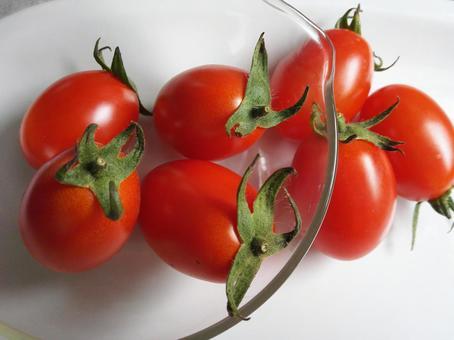 방울 토마토의 아이콘
