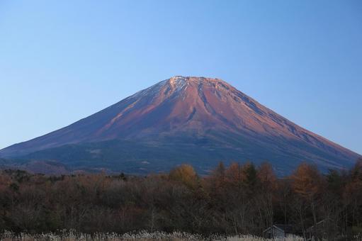Autumn red Fuji
