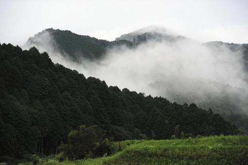 비 오름의 산