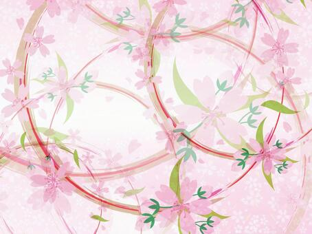 Cherry blossoms wallpaper background 26