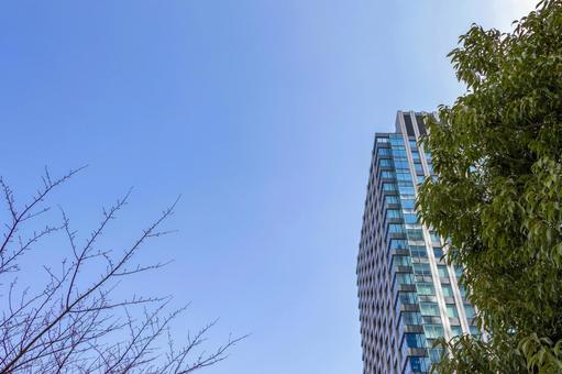 도시의 건물과 푸른 하늘