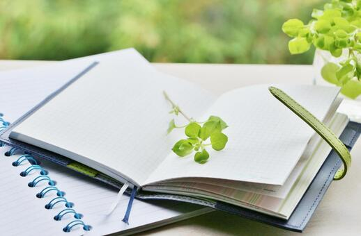 Handbook and plants