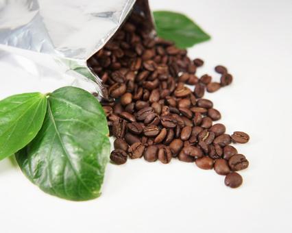 커피 신선한 커피 콩