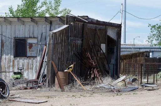 버려진 건물 5
