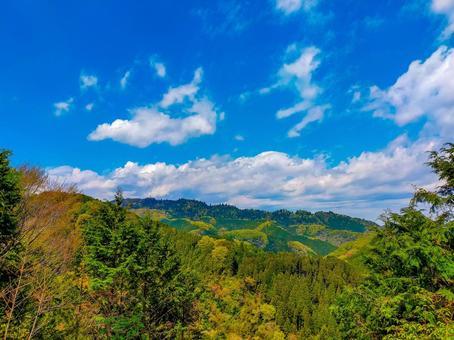 남쪽 카오산 용마루에서 카오산를 바라는 신록의 풍경