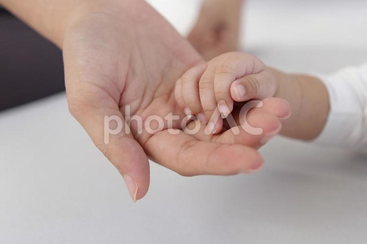 母子の手8の写真