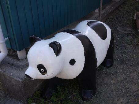 Freckle Panda