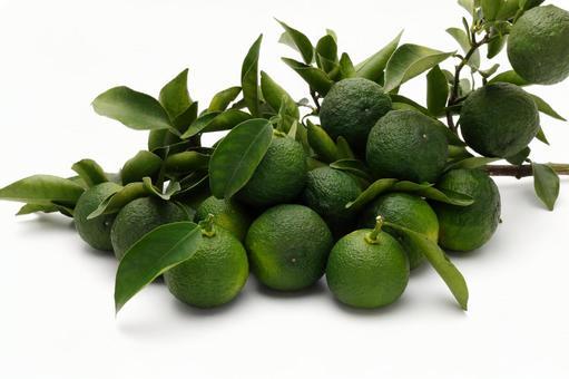 Yuzu, green yuzu fruit