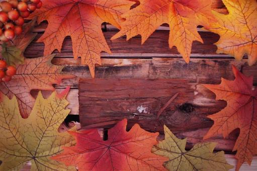 秋天的圖像落葉和木柴
