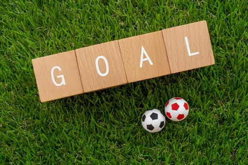 """Goal 