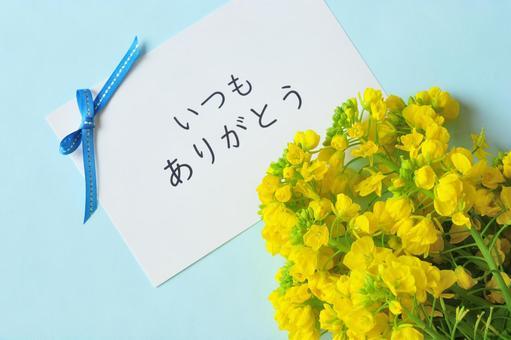 """유채 꽃의 꽃다발과 """"항상 감사합니다""""카드"""