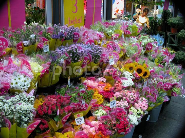 海外の花屋さんの写真