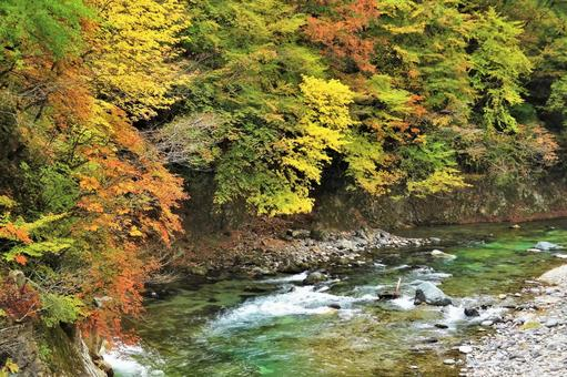 Autumn leaves in Shiobara Valley 44