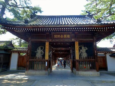 Shan Tong Temple Ren Wang Men King Kong statue