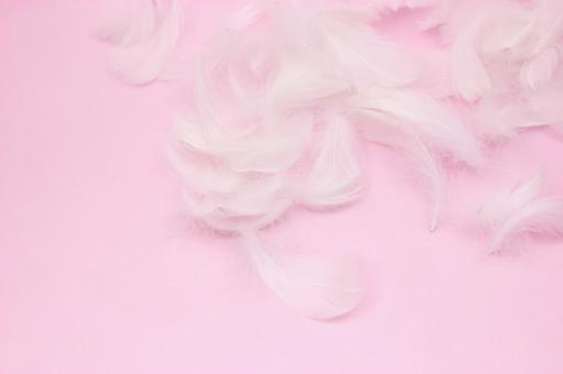 하얀 깃털 핑크 백 1
